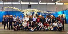 Cabeça Dinossauro sucesso de público