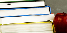 Fono da FOB promove curso para professores