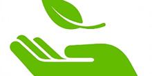 Pesquisa sobre Meio Ambiente no campus
